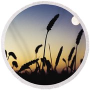 Wheat Field, Ireland Wheat Field And Round Beach Towel