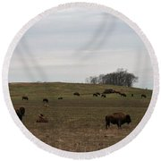 Where The Buffalo Roam 2 Round Beach Towel