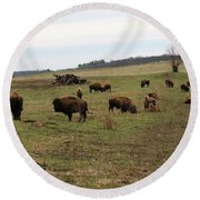 where the Buffalo Roam 3 Round Beach Towel