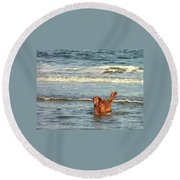 Where's The Ball Round Beach Towel