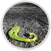 Whirly-gigs On The Path Round Beach Towel