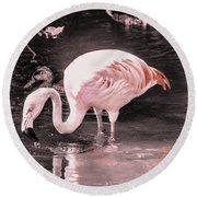 Whisper Pink Flamingo Round Beach Towel