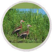Whistling Ducks Round Beach Towel
