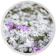 White And Pink Flowers At Botanic Garden In Blue Mountains Round Beach Towel