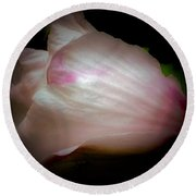 White And Pink Rose Of Sharon Round Beach Towel
