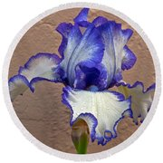 White And Purple Bearded Iris Round Beach Towel