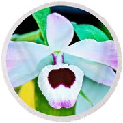 White And Purple Orchid In Greenhouse At Pilgrim Place In Claremont-california Round Beach Towel