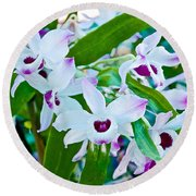 White And Purple Orchids In Greenhouse At Pilgrim Place In Claremont-california Round Beach Towel
