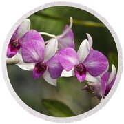 White And Purple Orchids Round Beach Towel