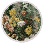 White And Yellow Chrysanthemums In The Garden At Petit Gennevilliers Round Beach Towel