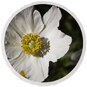 White Anemone Round Beach Towel