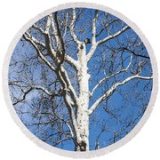 White Bark Round Beach Towel