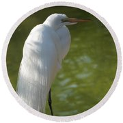 White Beauty Of The Marsh Round Beach Towel