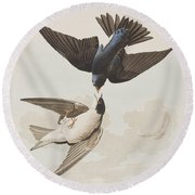 White-bellied Swallow Round Beach Towel