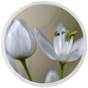 White Blossom 1 Round Beach Towel
