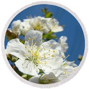 White Blossoms Art Prints Spring Tree Blossoms Canvas Baslee Troutman Round Beach Towel