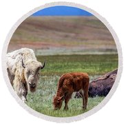 White Buffalo Round Beach Towel