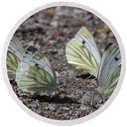 White Butterflies Round Beach Towel