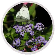 White Butterfly Round Beach Towel