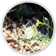 White Butterfly On Goldenseal Round Beach Towel
