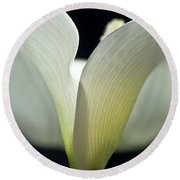 White Calla Lily Round Beach Towel