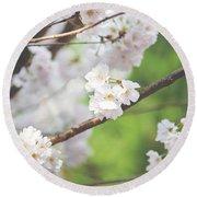 White Cherry Blossoms  Round Beach Towel