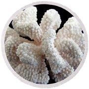 White Coral Round Beach Towel