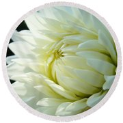 White Dahlia Flower Art Print Canvas Floral Dahlias Baslee Troutman Round Beach Towel