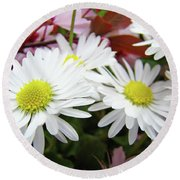 White Daisy Floral Art Print Canvas Pink Blossom Baslee Troutman Round Beach Towel