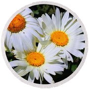 White Daisy Flowers Round Beach Towel