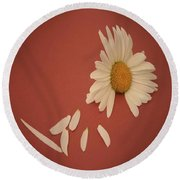 Encapsulated Daisy With Dropping Petals Round Beach Towel
