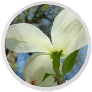 White Dogwood Flower Art Prints Blue Sky Baslee Troutman Round Beach Towel