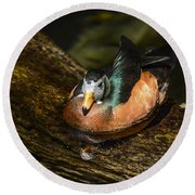 White-faced Whistling Duck  Round Beach Towel