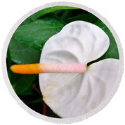 White Flamingo Flower Round Beach Towel