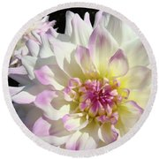 White Floral Art Bright Dahlia Flowers Baslee Troutman Round Beach Towel