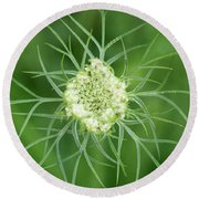 White Flower Spidery Leaves Round Beach Towel