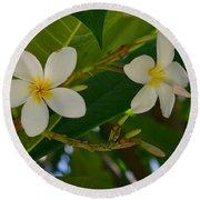 White Frangipani Flowers Round Beach Towel