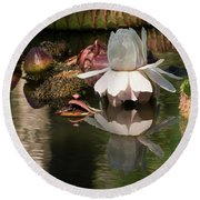 White Giant Water Lily Round Beach Towel