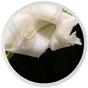 White Gladiolus Round Beach Towel
