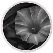 White Glory Round Beach Towel