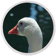 White Goose Sculpted By The Light Round Beach Towel