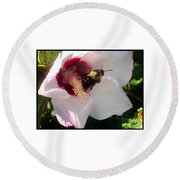 White Hibiscus Bloom With Bumble Bee Round Beach Towel