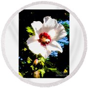 White Hibiscus High Above In Shadows Round Beach Towel