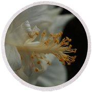 White Hibiscus Round Beach Towel