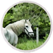 White Horse In A Green Pasture Round Beach Towel