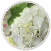 White Hydrangea At Rainy Garden In June, Japan Round Beach Towel