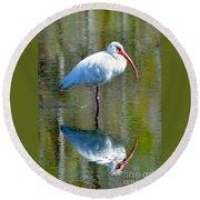 White Ibis And Reflection Round Beach Towel