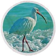 White Ibis Paradise Round Beach Towel