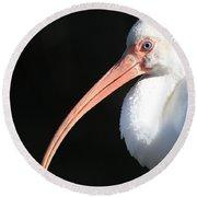 White Ibis Profile Round Beach Towel