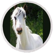 White Indian Pony Round Beach Towel
